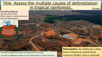 Direct-threats-to-the-rainforest.pptx