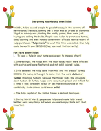 Spring! Learn about Tulips(A Freebie)