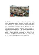 litter-pics-description-week-1.docx