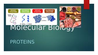 4.-Proteins.pptx