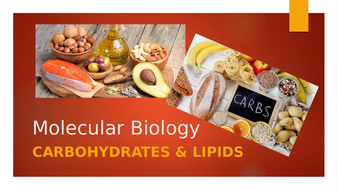 3.-Carbohydrates-and-Lipids.pptx