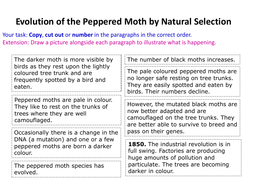 Ordering-activity-on-Evolution.pdf