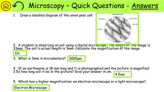AQA-Combined-Science-Biology-Required-Practical-Revision-PDF-05-Preview.jpg