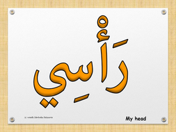 Body-parts-in-Arabic-English.jpg