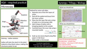 Required-practicals-AQA---Biology.pptx