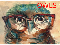 Owls-with-Stave-Notation.ppt