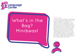 Whats-in-the-Bag-Minibeast.pdf