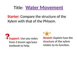(2)-Water-Transport.pptx