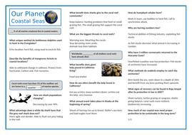 One-Planet-Shallow-Sea-Teacher-Sheet.docx