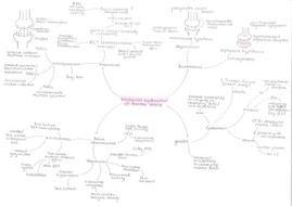 A* Psychology Mental Health mindmaps