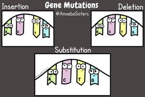 gene-mutation-gif_orig.gif