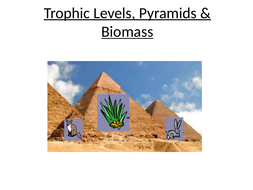 Trophic-Levels-and-Pryamids-of-Biomass.pptx