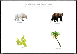 The-Adaptation-of-Living-Things-to-Climates-Activity.pdf