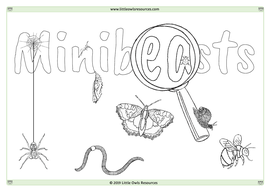 Minibeasts-Colouring.pdf