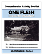 One Flesh Comprehension Activities Booklet!