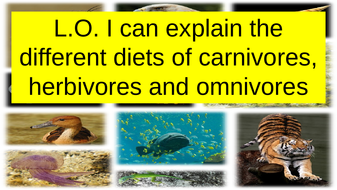 L.O.-I-can-explain-the-different-diets-of-carnivores--herbivores-and-omnivores.pptx