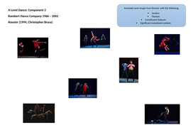 Rooster-photo-annotations-sheet.docx