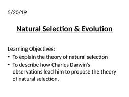 Natural-Selection.pptx