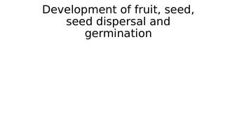 4)-development-of-fruit---seed---seed-dispersal---germination.pptx