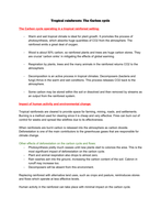 AQA Geography A-level - All physical case studies