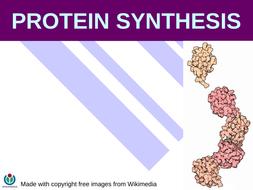 Translation, mRNA, tRNA, rRNA, Genetic code control of gene expression