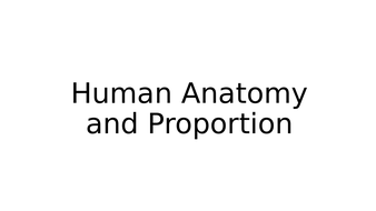 Series of activities for lessons on human anatomy and proportion