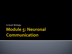 1.Neuronal-Communication-Presentation.ppt