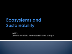 1.-Ecosystems-Presentation-To-Consolidate-Posters.ppt