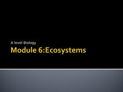 6.-Sampling-Presentation.ppt