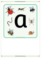 Minibeast-Alphabet.docx
