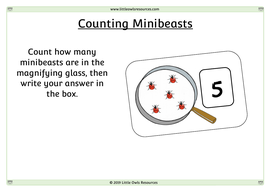 Counting-Minibeasts-Sheets.docx