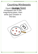 Counting-Minibeasts-Sheets-Large.docx