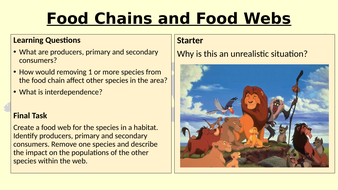 Year-9-Project---Food-webs-and-food-chains.pptx