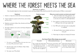 Rainforests Knowledge Organiser KO - Year 2 - Where the Forest Meets the Sea