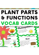Plant-Structure-and-Functions-Vocabulary-Cards.pdf