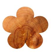 Wood-flower.jpg