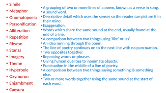 Poetry-key-terms-mix-and-match.pptx