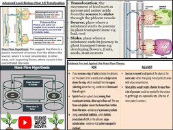 Translocation-in-a-Plant.pptx