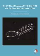 The-tiny-animal-at-the-centre-of-the-marine-ecosystem.pdf