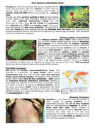 Viral-disease-information-sheet.docx