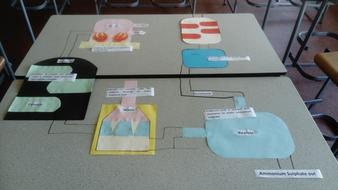 Making-ammonium-sulphate-model.JPG