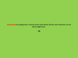 GCSE PE - Command word roulette