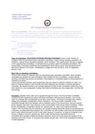US-Government-and-Politics---committees.docx