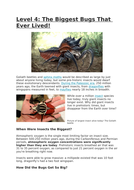 HW-info-sheet-Insects-level-4.docx
