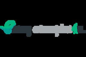 essayexamples-logo.png
