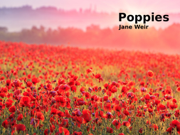 Poppies by Jane Weir- Poetry Analysis (CCEA GCSE Conflict Poetry)