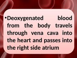 KS4-blood-flow-through-the-heart-cards.pptx