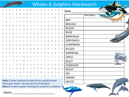 3 x Whales & Dolphins Wordsearch Sheet Starter Activity Keywords Cover Homework Animals Sea Ocean