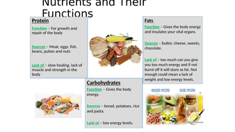 2---What-nutrients-do-you-need.pptx