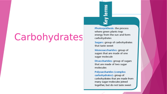3---Carbohydrates.pptx